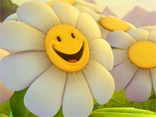 8 martch flower