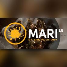 MARI_1.5