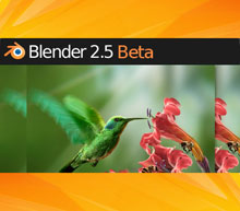 Blender 2.53 beta logo