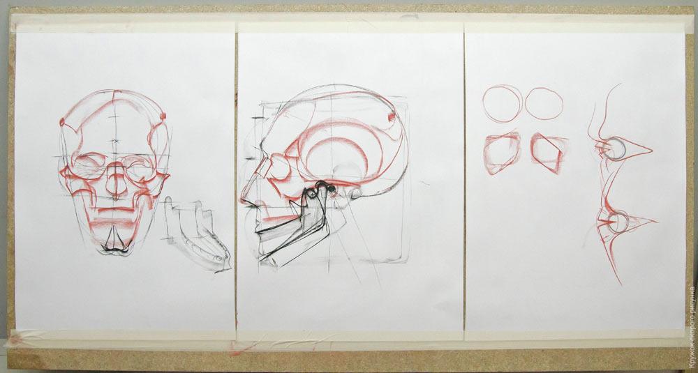 Кружок скорого рисунка рыжкина