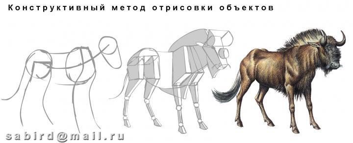 1374_1910.jpg