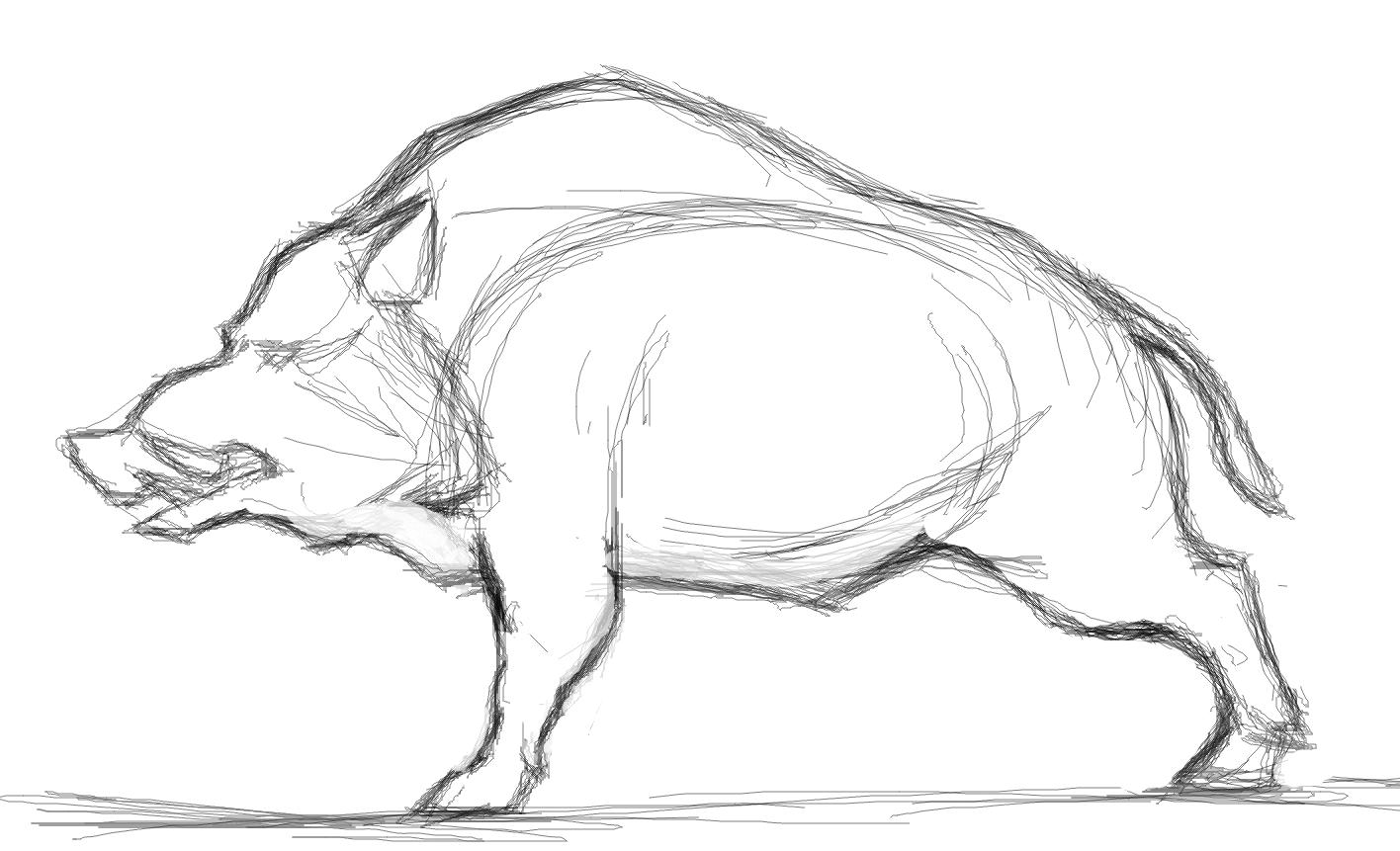 boar1.png