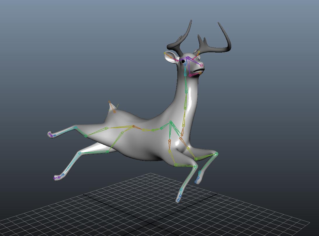 deer_posing.jpg