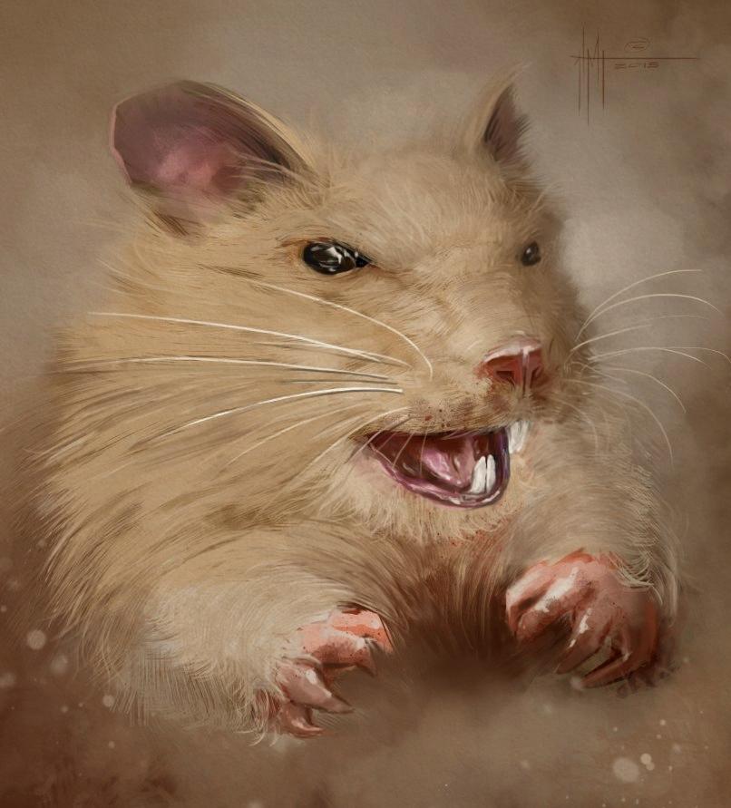 крысь копия.jpg
