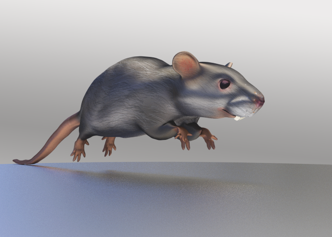 mouse_5.png
