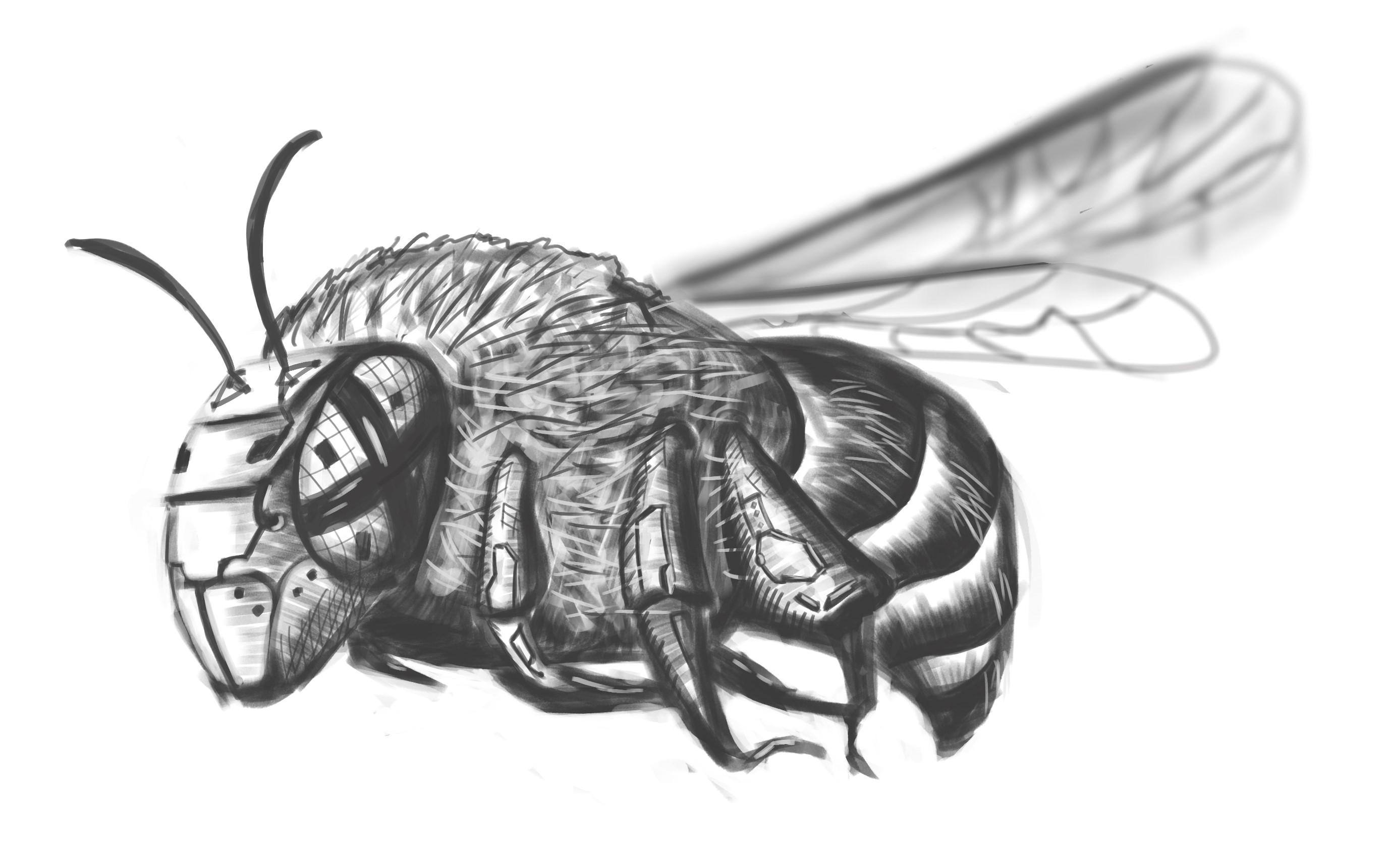 Робо пчела.jpg